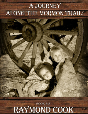 Book Cover #13